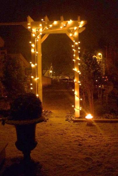 Hvordan lage vinterhage fest